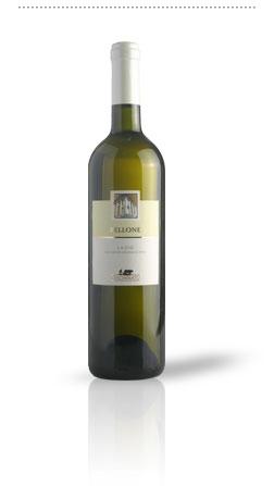 Compro Vino Bellone