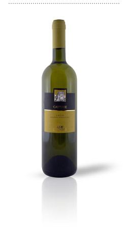 Compro Vino Castore