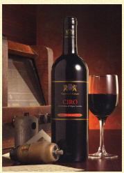 Acquistare Vino Cirò