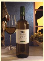Acquistare Vino Cirò Bianco