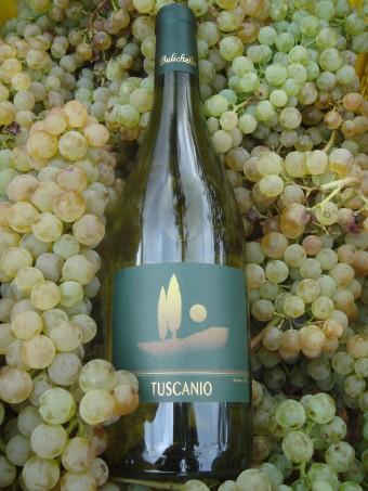 Compro Vino Tuscanio bianco Doc Val di Cornia