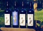 Compro Vini