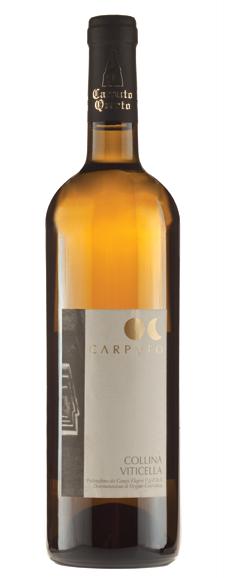 Compro Vino Collina Viticella