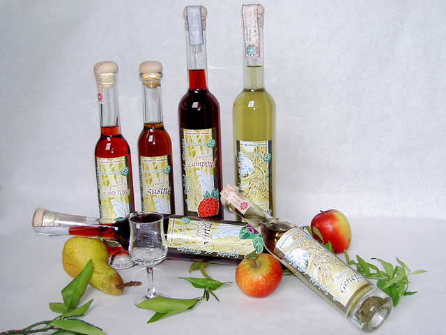 Compro Liquori frutta e erbe alpine