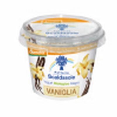 Compro Yogurt