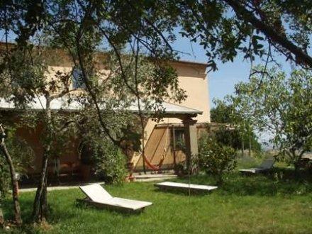 Compro Casale con giardino nella zona del Morellino di Scansano Grosseto