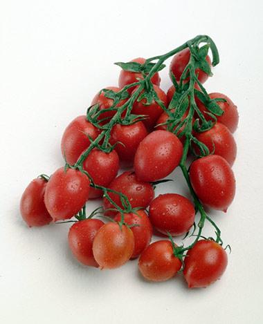 Acquistare Pomodorino categ. Cherry-Piccadilly