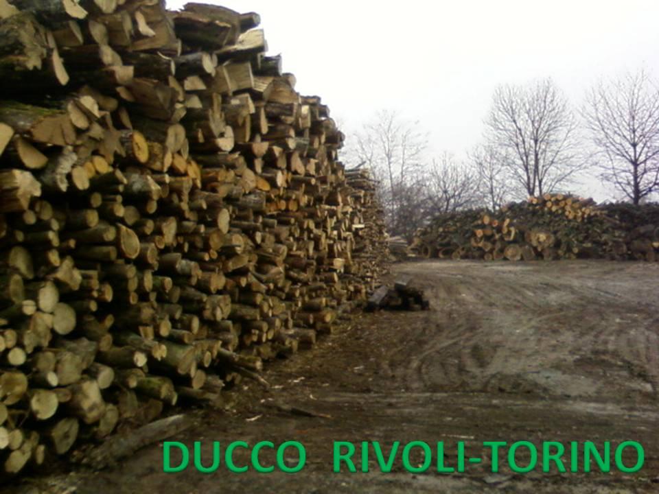 Compro Legna da ardere in tronchi (lunga, da lavorare)