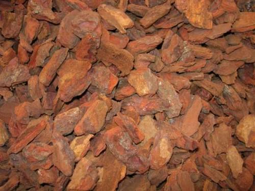 Compro Corteccia Di Pino (Conifere) Per Uso Ornamentale