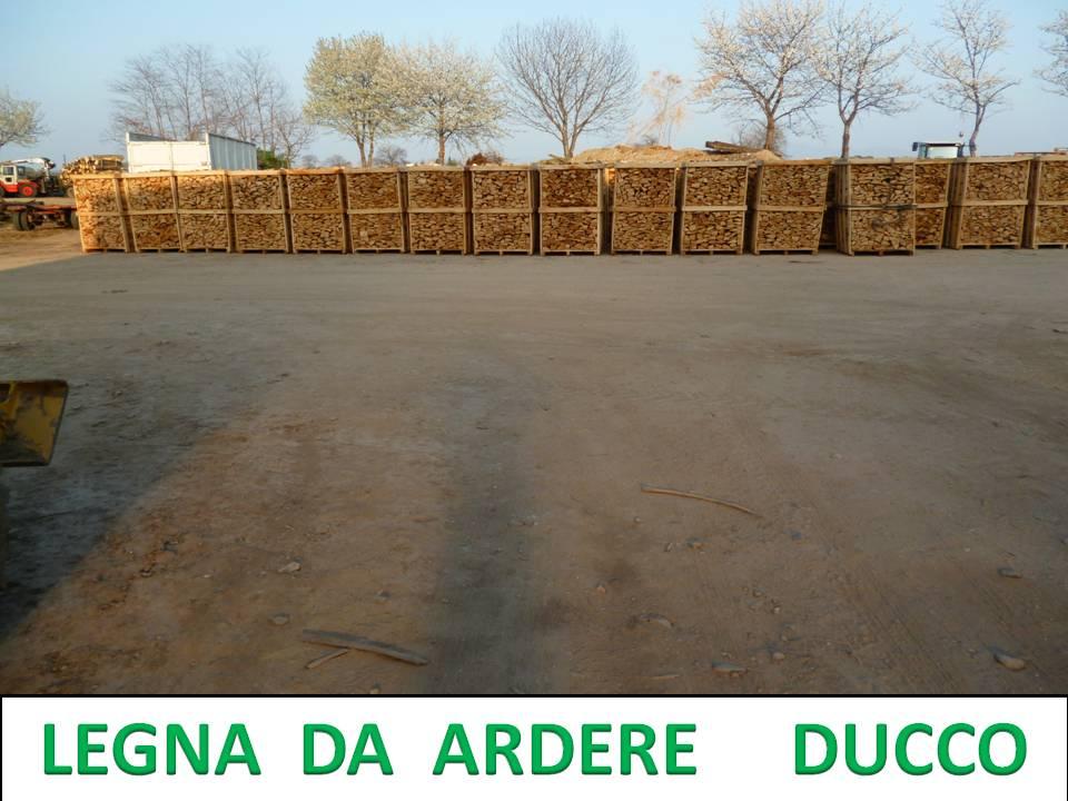 Compro Legna Da Ardere Spaccata Secca Per Camino Su Pallet Di Faggio,Carpine,Quercia,Acacia,Frassino,Olivo...