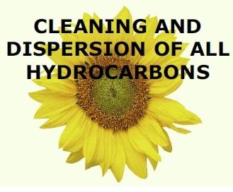 Compro Detergente emulsionabile Biosane Bio 2000 E