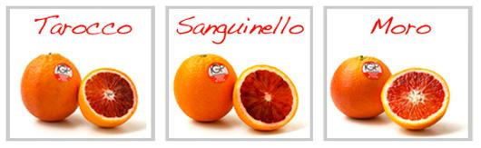 Acquistare Export Arance rosse di Sicilia IGP