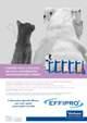 Acquistare Antiparassitari per cani e gatti