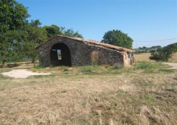 Acquistare Terreno agricolo / coltura in Vendita a Todi