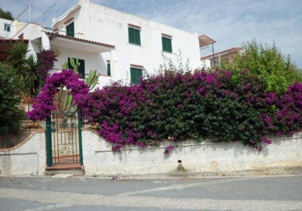 Casa indipendente in Vendita a San Nicola Arcella - 70 m²