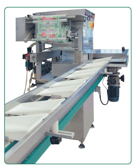 Acquistare Termosaldatrice automatica TS2HG2/600