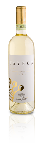 """Compro Vino Roero Arneis """"Cayega"""" Docg"""
