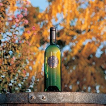 Compro Vino Moscato d'Asti