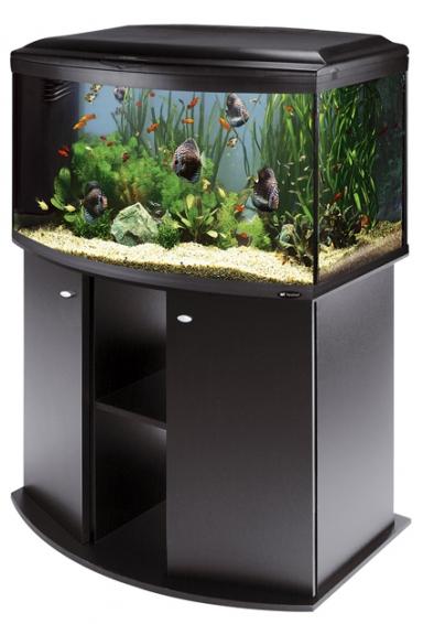 Compro Acquario in vetro Cayman 110 scenic