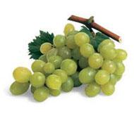 Frutta organica