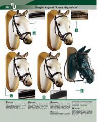 Artcoli da equitazione: briglie inglesi linea