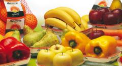 Frutta e verdura biologica