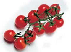 Pomodorino  Ciliegino categoria Cherry