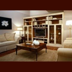 Classical furniture for living room