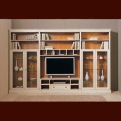 Built-in closets for living room
