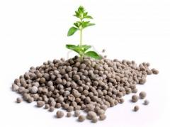Nitrogen fertilizers