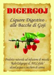 DIGERGOJ 70 cl. ( Liquore  Digestivo alle Bacche
