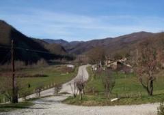 Azienda agricola in Vendita a Sant'Agata