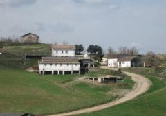 Azienda agricola in Vendita a San Leo