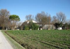 Terreno agricolo / coltura in Vendita a Ravenna