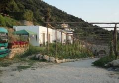 Azienda agricola in Vendita a Anacapri