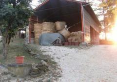 Azienda agricola in Vendita a San Severino Marche