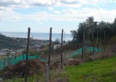 Terreno edificabile residenziale in Vendita a San
