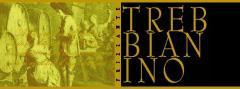 Vino Trebbianino vivace