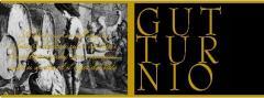 Vino Gutturnio fermo