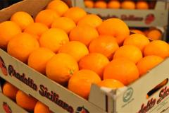 Red Blood Sicilian Oranges, Tarocco, Sanguinelli