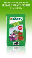 Blumen Torfy (Terriccio specifico per Gerani e
