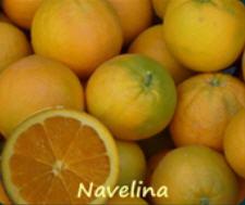 Navelina