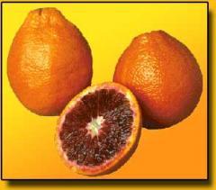 Arancia Tarocco del Muso