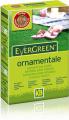 Evergreen Ornamentale - Miscuglio di sementi