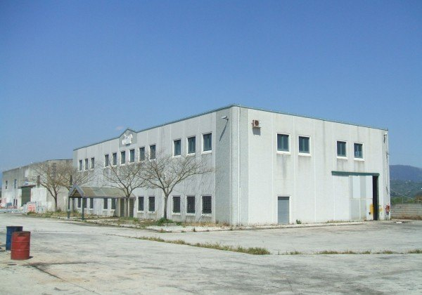 Ordine Capannone in Affitto a San Salvatore Telesino - 1600 m²
