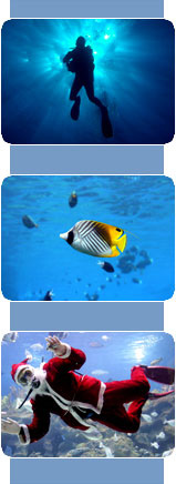 Ordine Riprese subacquee