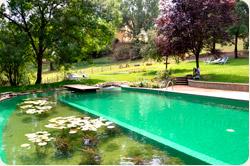 Ordine La piscina biologica o biolago
