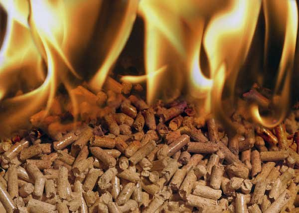 Ordine Acquisto e vendita legna da ardere e pellets