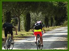Ordine Mountain bike