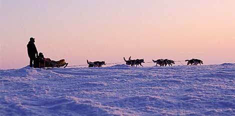 Ordine La Laponia in 3 safari